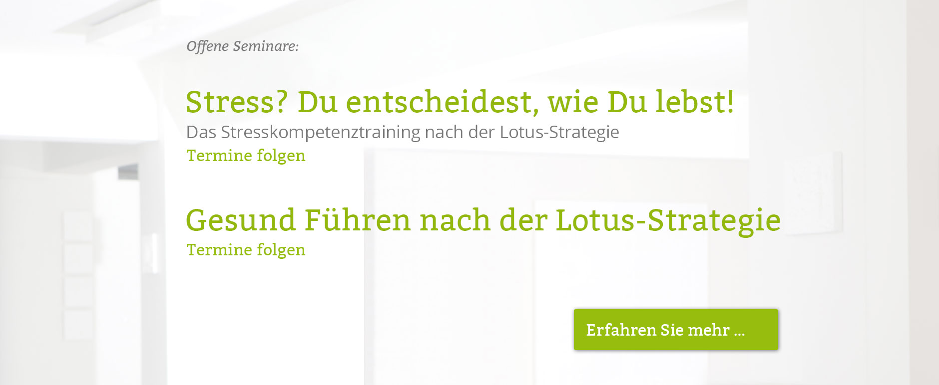 Lotus-Strategie